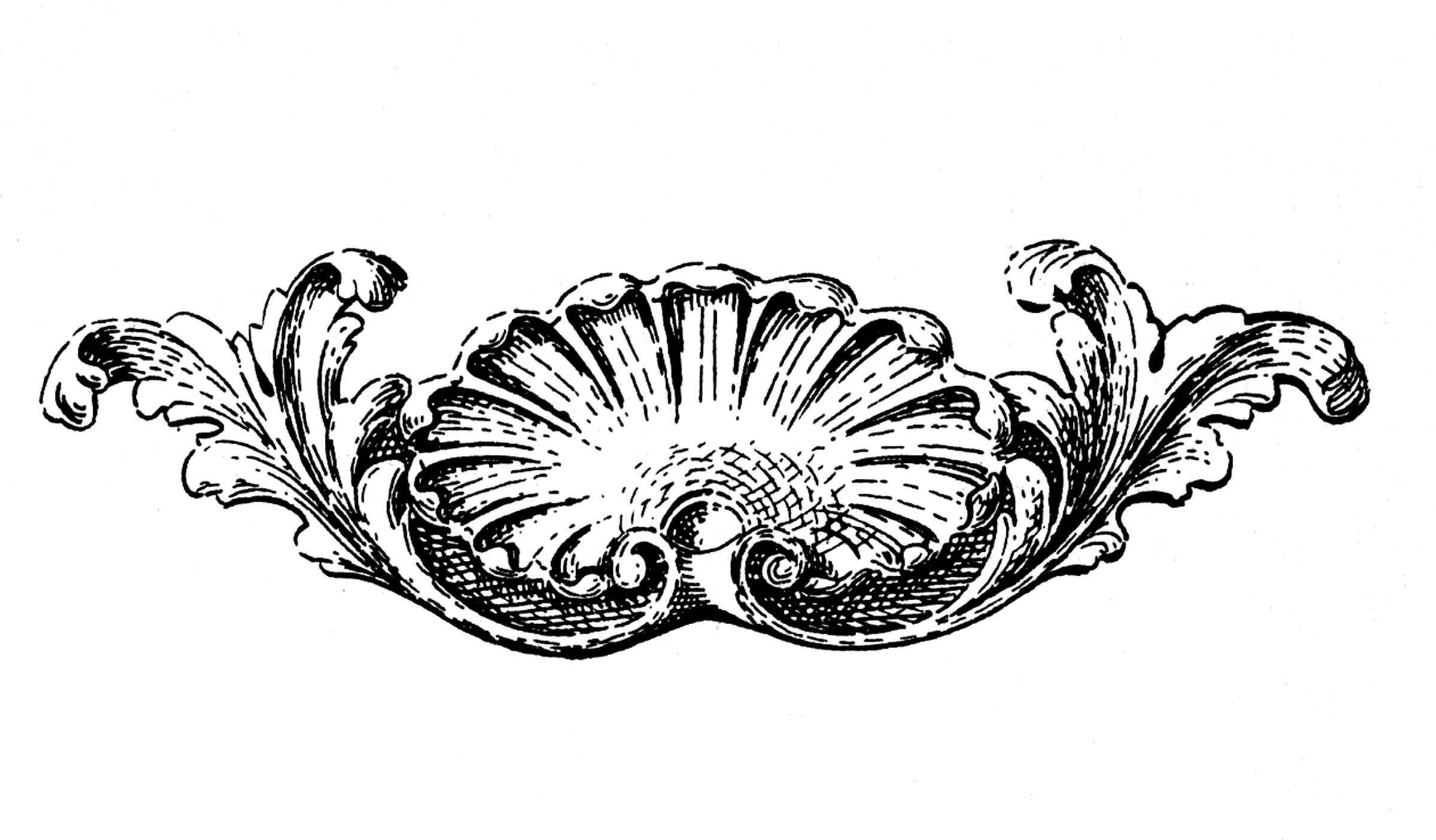 Shell pattern clipart victorian image black and white stock 10 Ornamental Shell Clipart Images - The Graphics Fairy image black and white stock