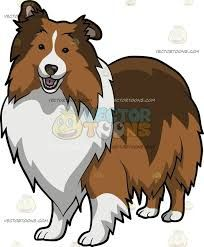Sheltie clipart png free Image result for sheltie line drawings | rug hooking ... png free
