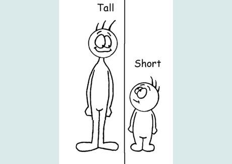 Short and tall clipart banner royalty free stock Tall Vs Short Clipart - Clipart Kid banner royalty free stock