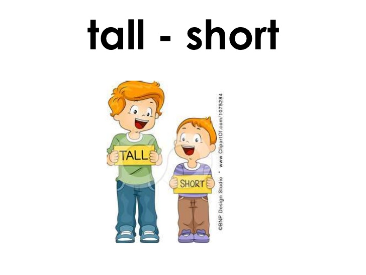 Short and tall clipart picture stock Clipart tall short - ClipartFest picture stock