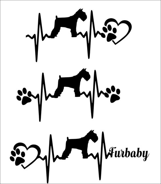 Short tail dog clipart free clip art transparent download SVG Cut File Miniature Schnauzer short tail - Heartbeat paw with ... clip art transparent download