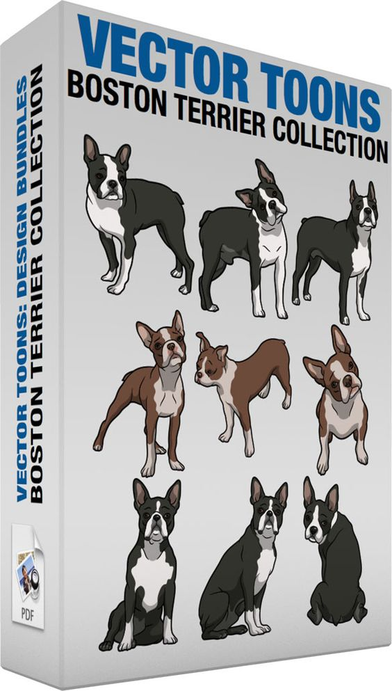 Short tail dog clipart free freeuse library Boston Terrier Collection | Coats, Cartoon and The floor freeuse library