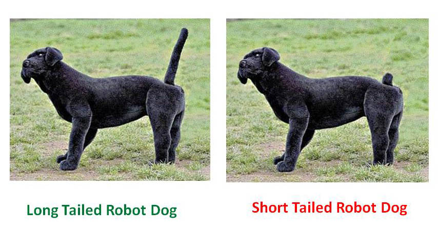 Short tail dog clipart free svg royalty free download Long Tails Versus Short Tails and Canine Communication ... svg royalty free download