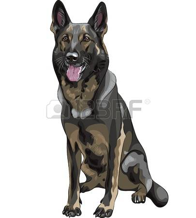 Short tail dog clipart free banner royalty free stock 485 Short Tail Stock Illustrations, Cliparts And Royalty Free ... banner royalty free stock