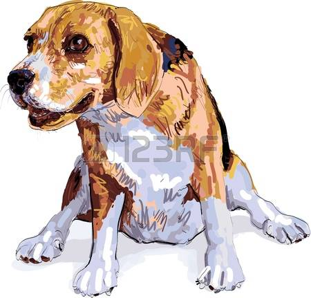 Short tail dog clipart free picture free library 485 Short Tail Stock Illustrations, Cliparts And Royalty Free ... picture free library