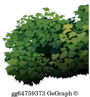 Shurbs clipart png freeuse Shrubs Clip Art - Royalty Free - GoGraph png freeuse