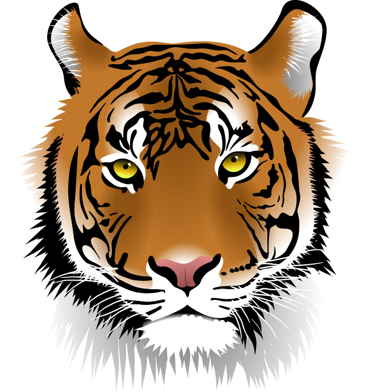 Tiger cat clipart png library stock Siberian Tiger Clipart at GetDrawings.com | Free for personal use ... png library stock