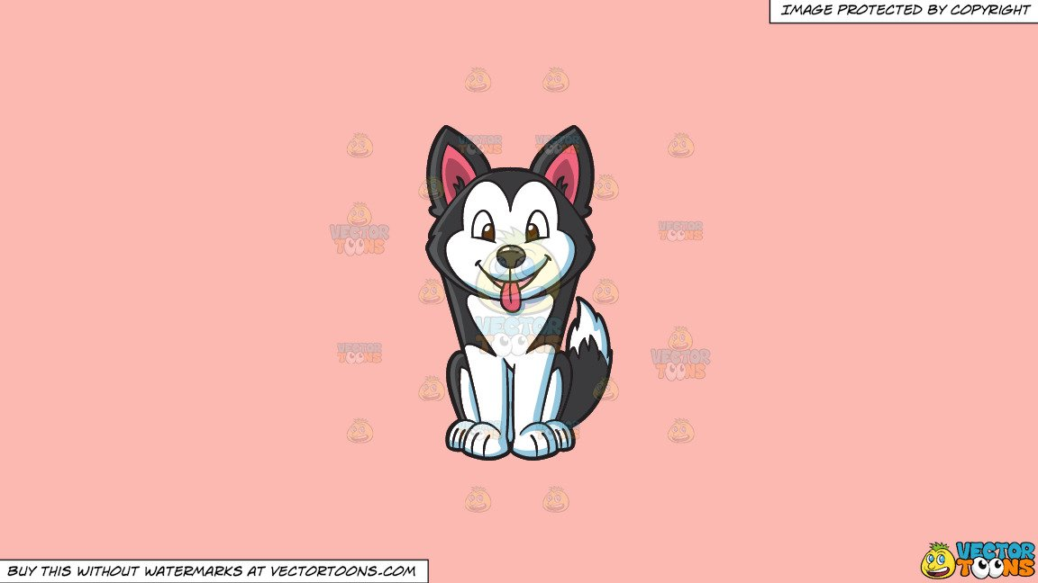 Siberian clipart svg library download Clipart: A Siberian Husky Puppy on a Solid Melon Fcb9B2 Background svg library download