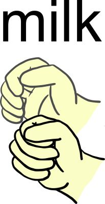 Sign language milk clipart clip art free library 17 Best images about Sign Language, Deafness, Listening on ... clip art free library