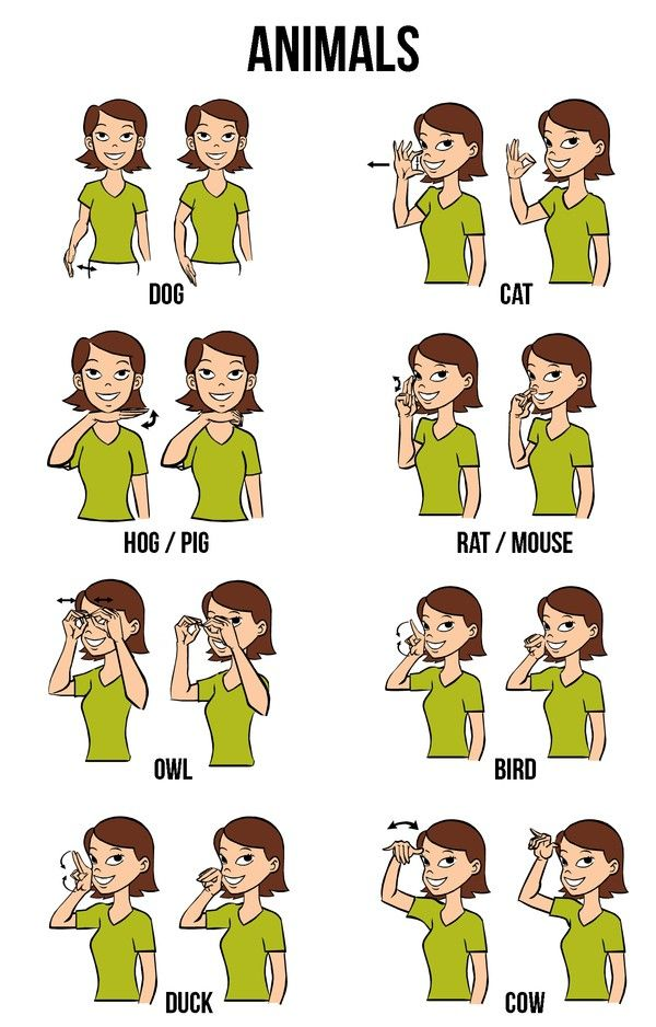 Sign language more clipart clipart black and white download 1000+ ideas about Baby Sign Language on Pinterest | Teaching baby ... clipart black and white download