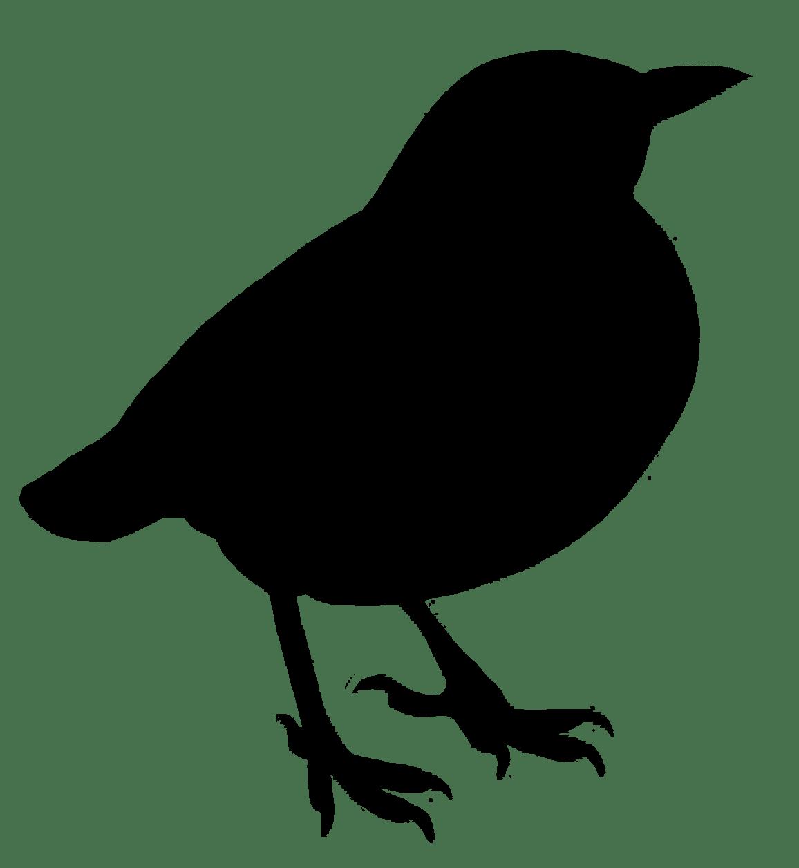 Silhouette clipart transparent background jpg library library Bird Silhouette Clipart transparent PNG - StickPNG jpg library library