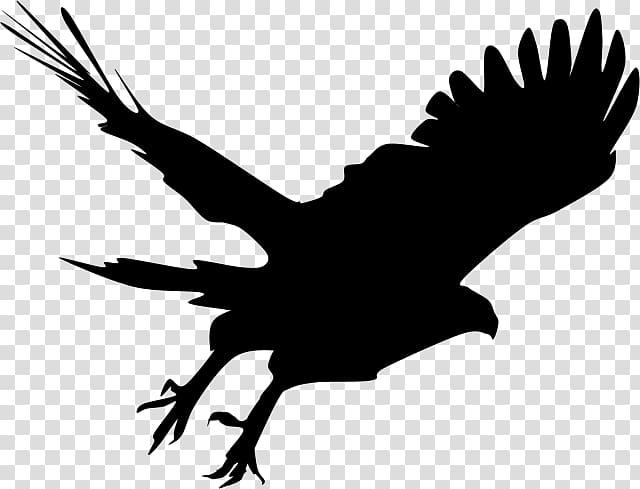 Silhouette eagle clipart clip art free download Bald Eagle Silhouette Hawk , Silhouette transparent ... clip art free download