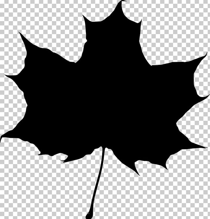 Silhouette maple trees clipart clipart black and white stock Drawing Silhouette Maple Leaf PNG, Clipart, Animals, Black ... clipart black and white stock
