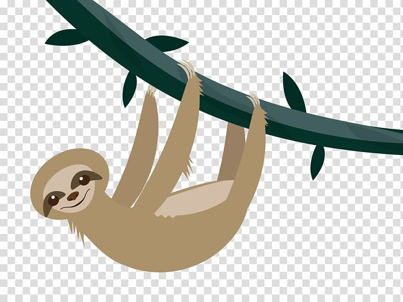 Silicon clipart picture free stock Silicon Valley Sloth Cartoon , sloth transparent background ... picture free stock