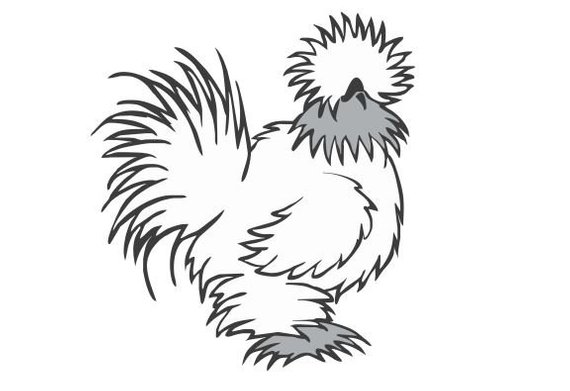 Silkie clipart clip library stock Silkie Decal / Chicken lover / Funny Decal / Farm decal ... clip library stock