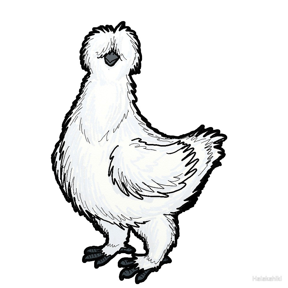 Silkie clipart vector library Silkie Chicken\