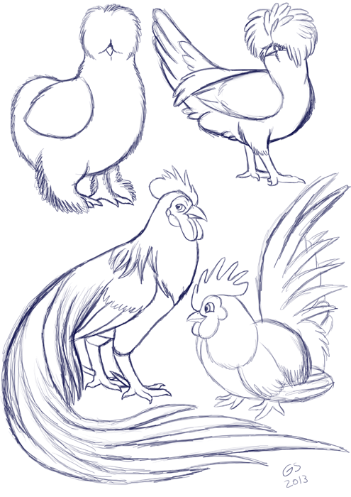 Silkie clipart png freeuse silkie chicken drawing - Google Search | Backyard Chickens ... png freeuse