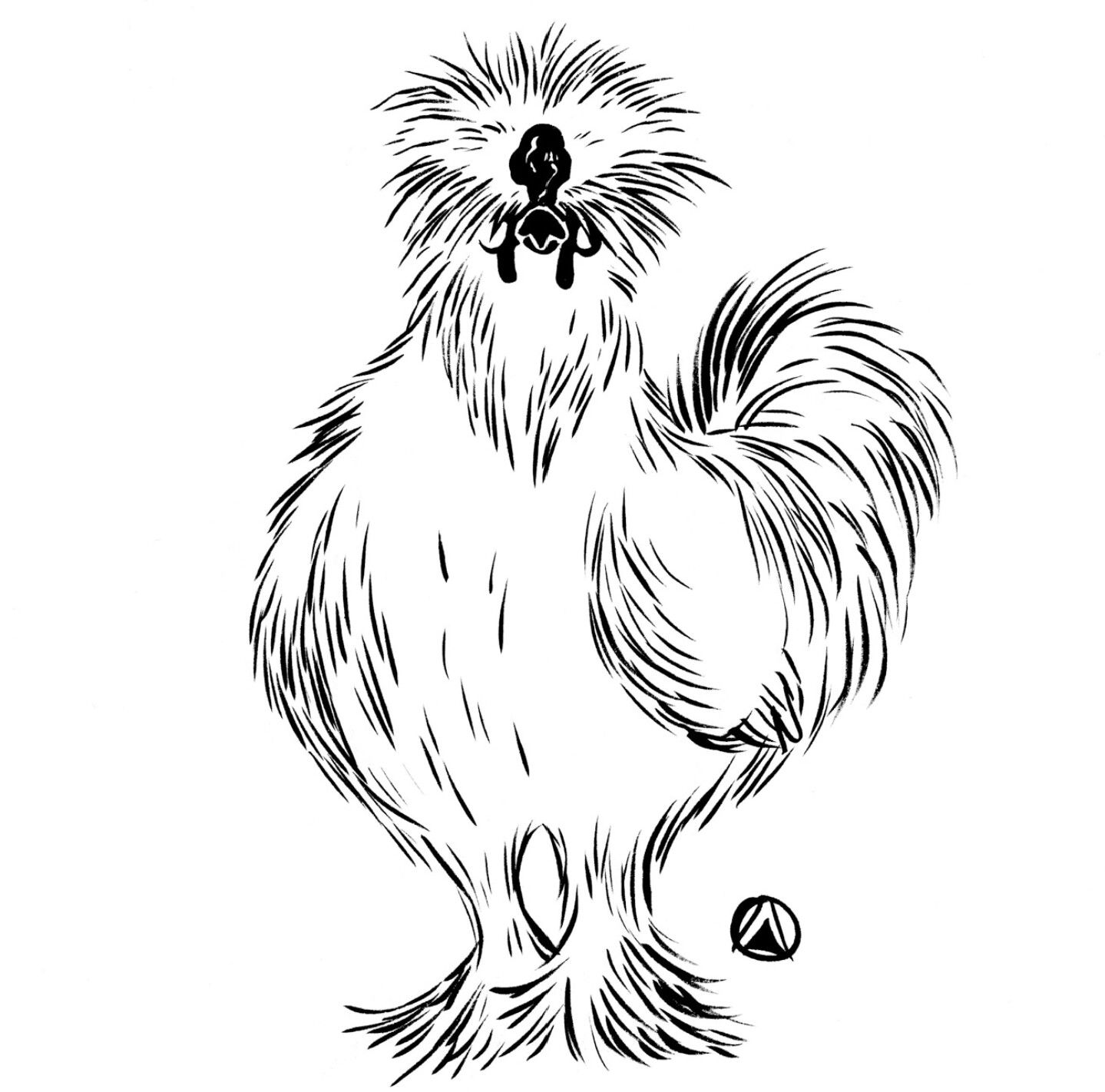 Silkie clipart svg freeuse stock Drawing by \