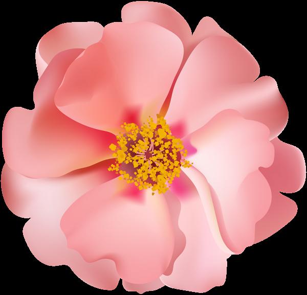 Silver bells flower clipart clip art freeuse download Rosebush Flower PNG Clip Art Image | Gallery Yopriceville - High ... clip art freeuse download