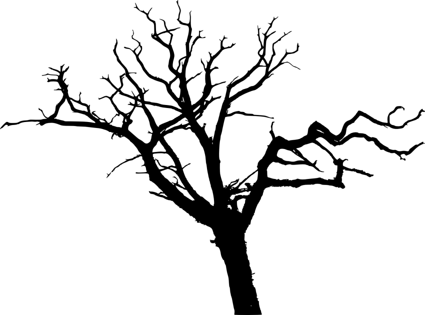 Simple tree siloet clipart picture transparent library simple bare tree silhouette png - Free PNG Images | TOPpng picture transparent library