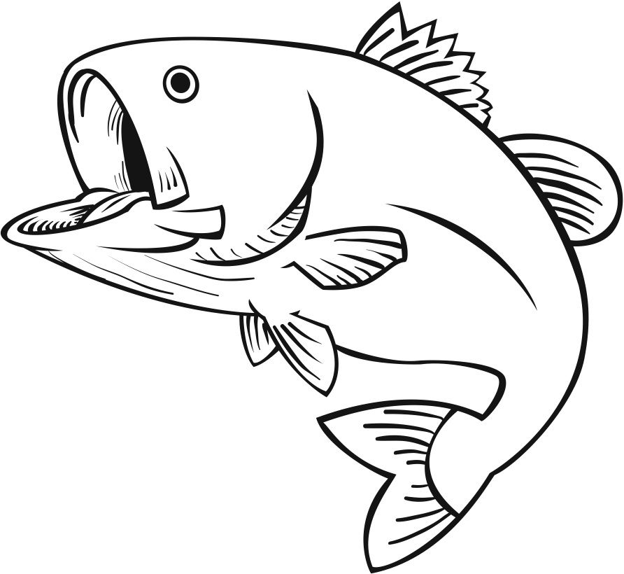 Simple bass clipart black and white banner free download Bass cliparts | stencils | Fish drawings, Fish clipart, Fish ... banner free download