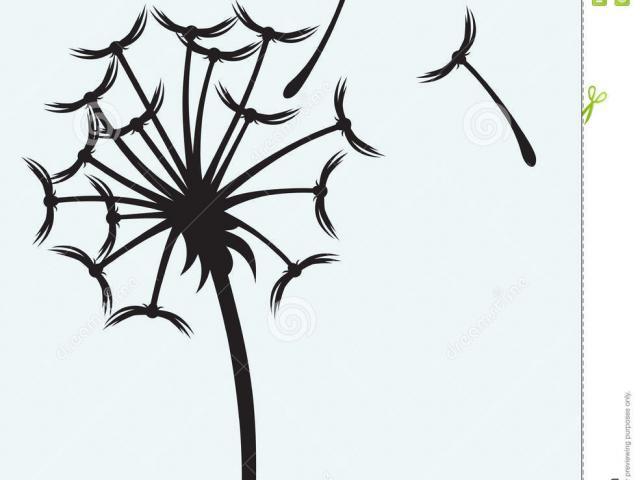 Simple dandelion clipart vector stock Collection of Dandelion clipart   Free download best ... vector stock