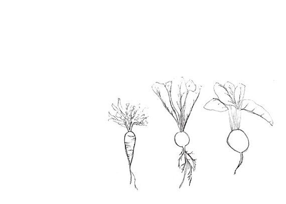 Simple drawing of rows of turnip garden clipart jpg transparent Minimalist Garden Art Limited Edition Line by ... jpg transparent