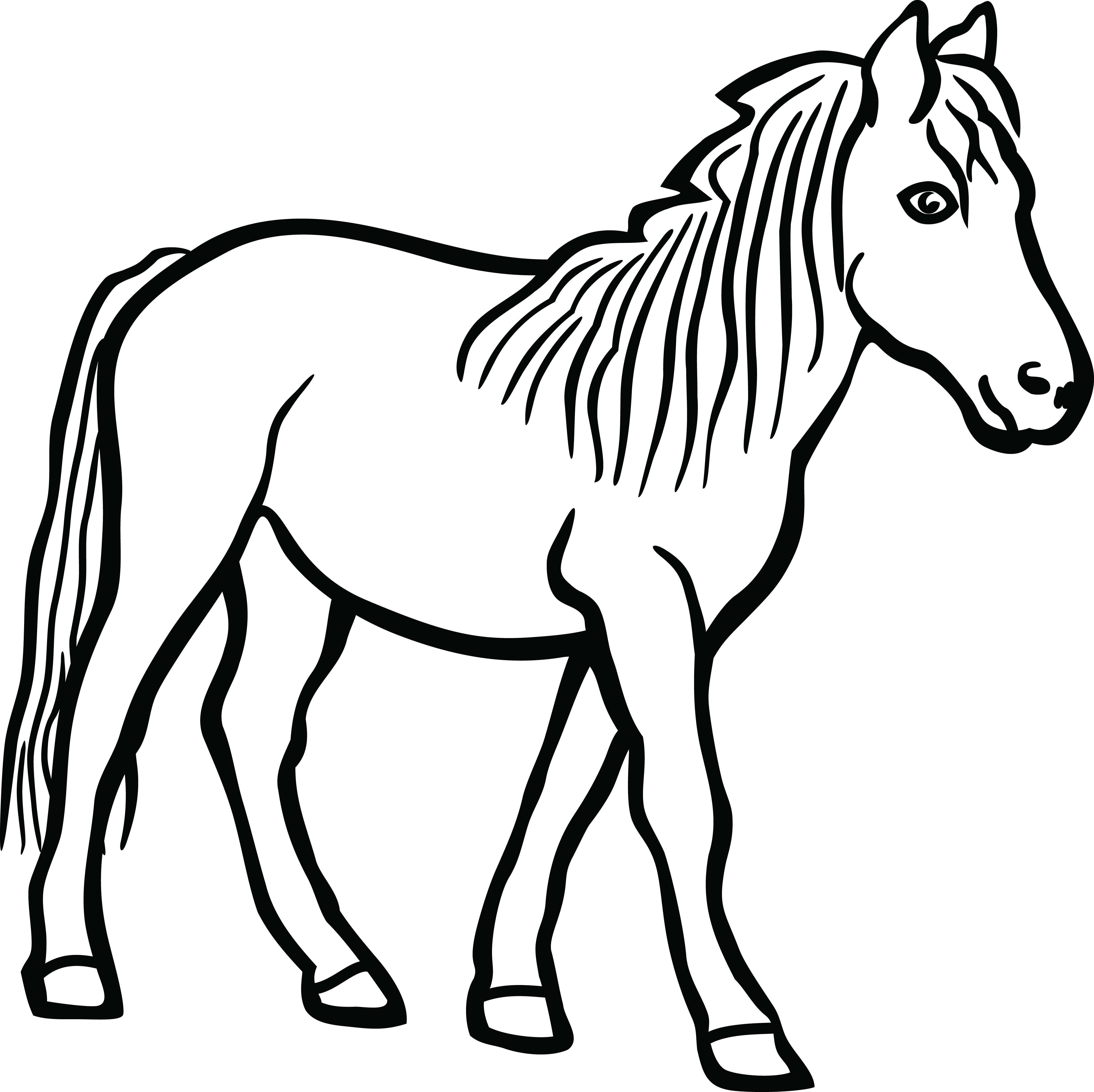 Simple horse clipart jpg library download Simple Horse Head Drawing | Free download best Simple Horse ... jpg library download