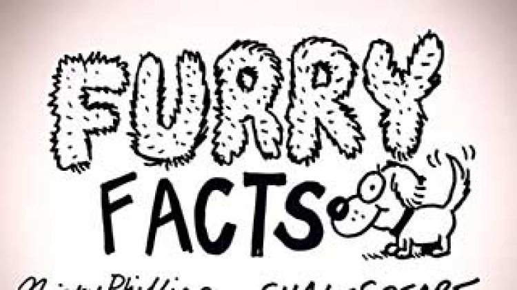 Sinkhole rubble clipart clip art Furry Facts: Sinkholes clip art