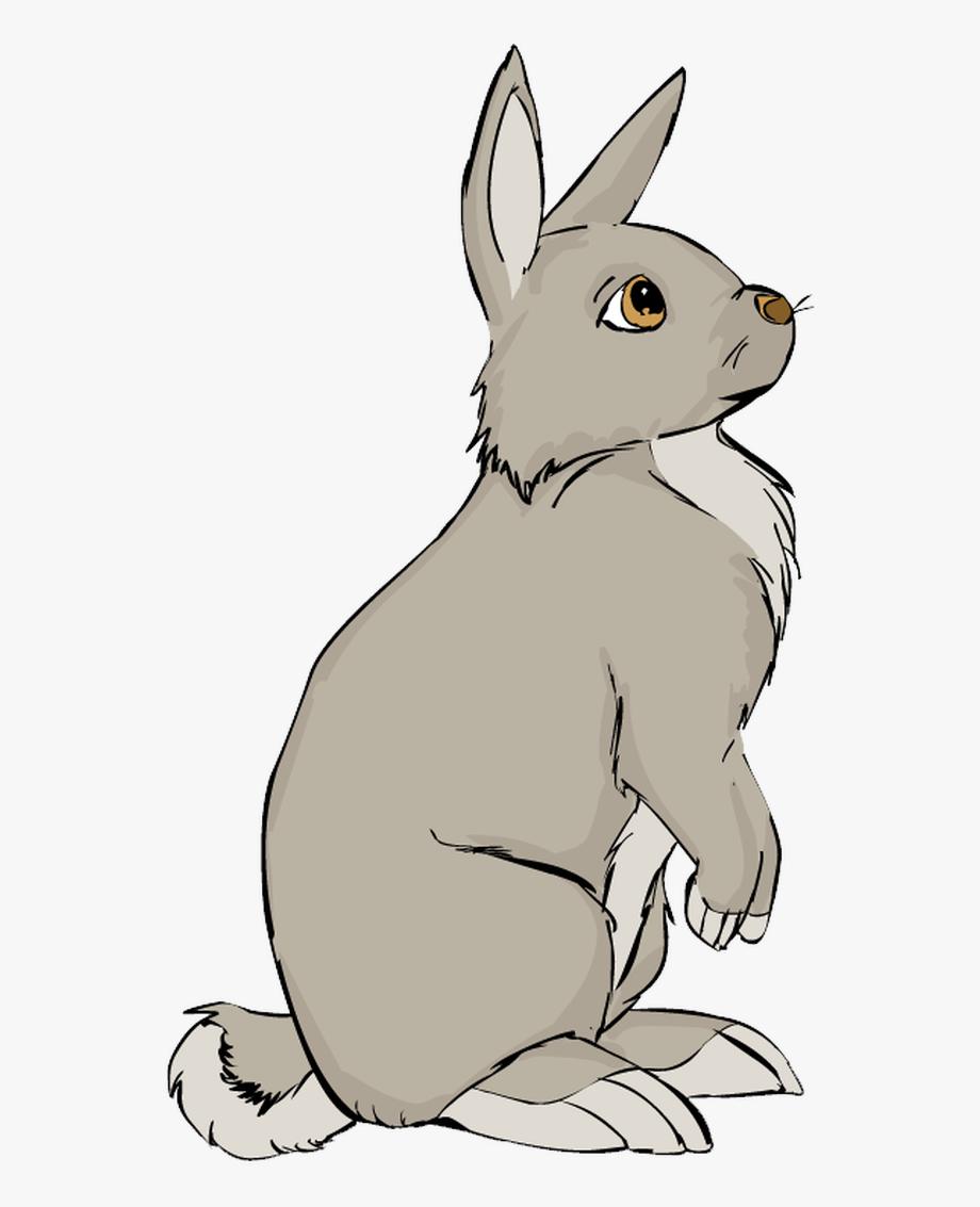 Sitting bunny clipart graphic free library A Brown Bunny - Bunny Sitting Clipart #1656474 - Free ... graphic free library