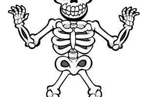 Skeleton clipart for kids vector royalty free download Skeleton clipart for kids 1 » Clipart Portal vector royalty free download