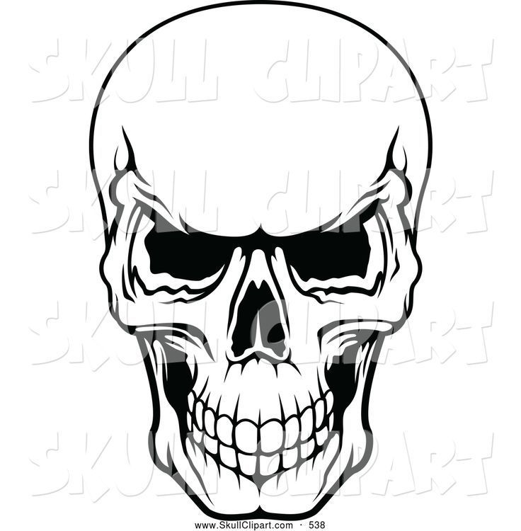 Skeleton face clipart picture free library Skeleton Clipart Black And White | Free download best ... picture free library