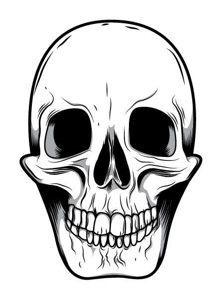 Skeleton faces clipart image black and white library Skeleton Face Clip Art | Mean Skull Drawings | good ideas in ... image black and white library