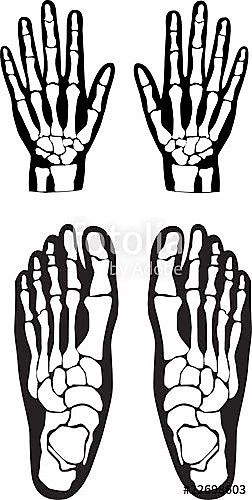Skeleton feet clipart svg freeuse library Skeleton - patterns for hands & feet | Bman in 2019 ... svg freeuse library