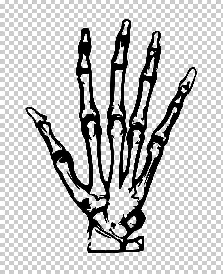 Skeleton hand clipart image transparent library Human Skeleton Hand PNG, Clipart, Anatomy, Black And White ... image transparent library