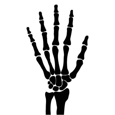 Skeleton hand clipart banner royalty free Skeleton hand clipart » Clipart Station banner royalty free