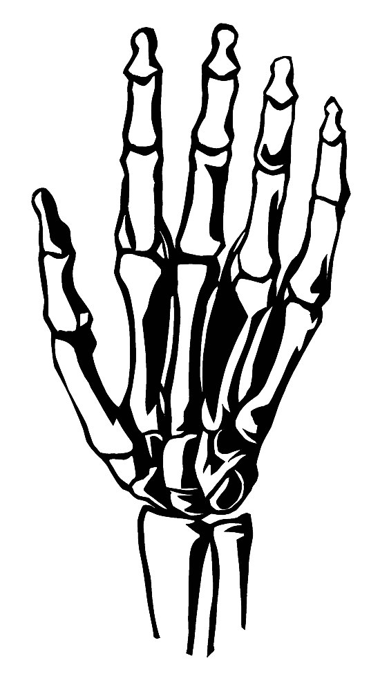 Skeleton hand clipart vector black and white stock Free Skeleton Hand Cliparts, Download Free Clip Art, Free ... vector black and white stock