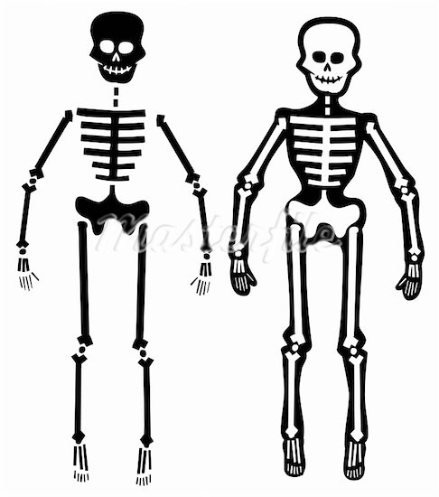 Best human cliparts banner library Top human skeleton art images for clip image cliparts ... banner library