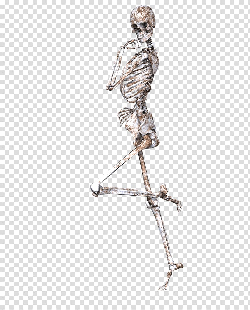 Skeletons leg clipart freeuse download Human skeleton illustration, Skeleton on One Leg transparent ... freeuse download