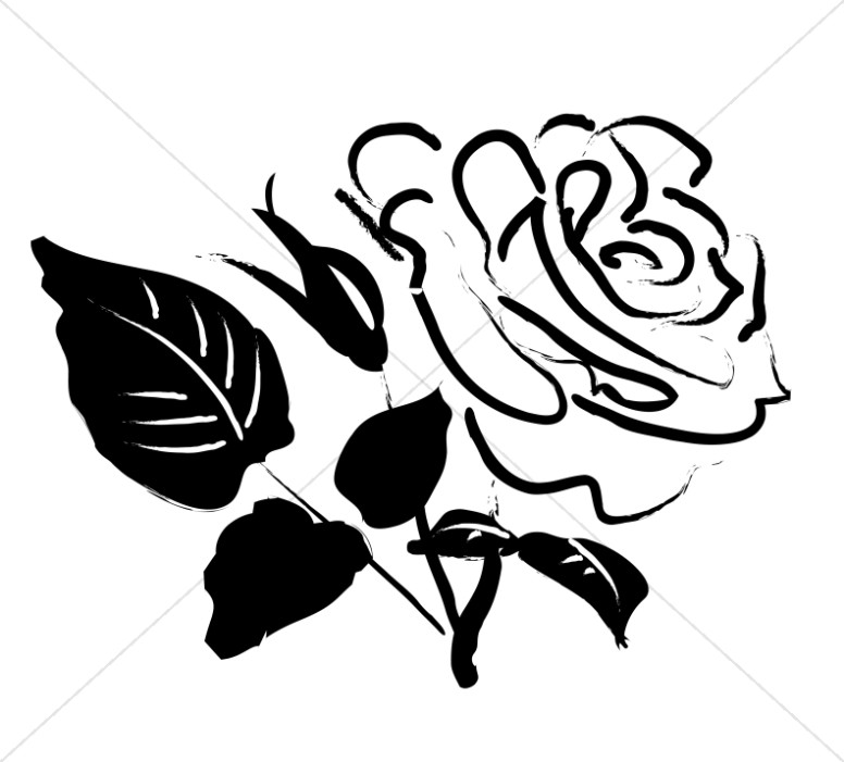 Sketch rose cliparts vector library download Rose Blossom Sketch | Church Rose Clipart vector library download