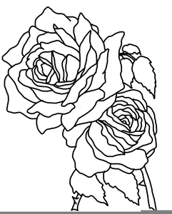 Sketch rose cliparts graphic freeuse library Sketch Rose Clipart | Free Images at Clker.com - vector clip ... graphic freeuse library