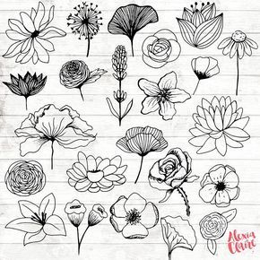 Sketched flower clipart png royalty free download Flowers Clipart - 23 Hand Drawn Floral Cliparts - Realistic ... png royalty free download
