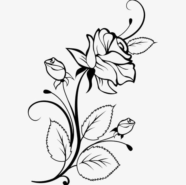 Sketched flower clipart clip art Black Flowers Sketch PNG, Clipart, Black, Black Clipart ... clip art