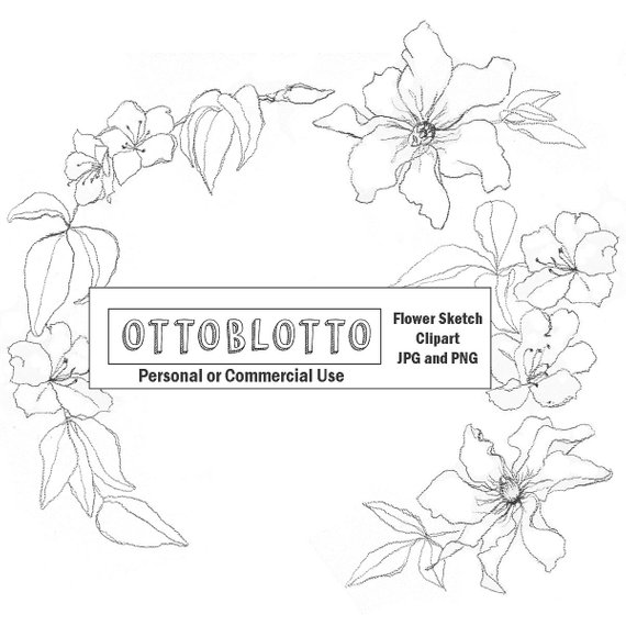 Sketched flowers clipart banner royalty free download BOHO CLIPART Sketched flowers, hand drawn line drawing ... banner royalty free download
