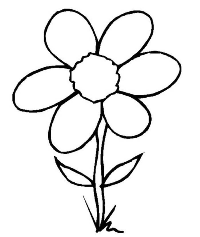 Line drawing of flowers clipart banner royalty free Free Pictures Of Flower Drawings, Download Free Clip Art ... banner royalty free