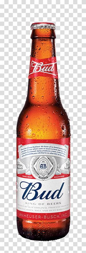 Skol long neck clipart clipart transparent download Brahma beer Long Neck Pilsner Corona, long neck transparent ... clipart transparent download