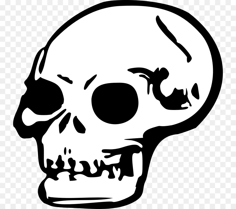 Skull art clipart png library library Skull Art clipart - Skull, Face, Nose, transparent clip art png library library