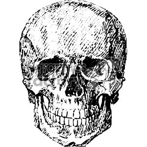 Skull art clipart image free stock vintage vector skull art clipart. Royalty-free clipart # 403123 image free stock