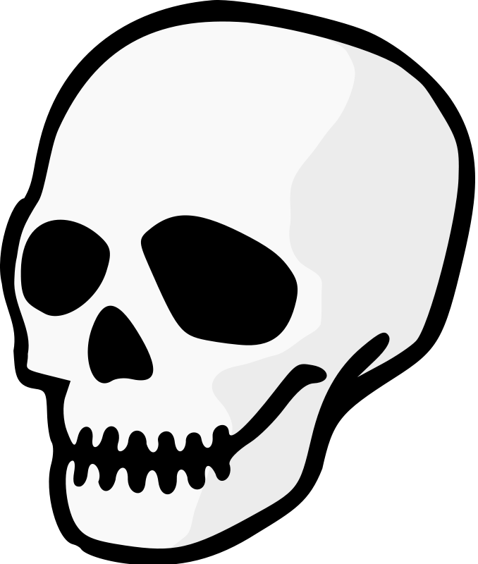 Skull drumsticks clipart banner freeuse library Skull | Free Stock Photo | Illustration of a human skull ... banner freeuse library
