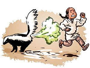 Skunk spraying human clipart
